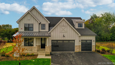 Vernon Hills Single Family Home For Sale: 16009 Woodbine Court