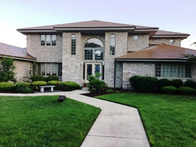 Orland Park Single Family Home New: 97 Windmill Road