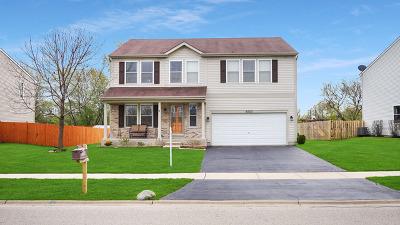 Mc Henry County Single Family Home New: 9703 Creekside Drive