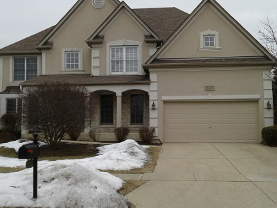 Kane County Single Family Home New: 633 Waterside Drive