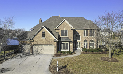 Plainfield Single Family Home New: 13238 Lakepoint Drive
