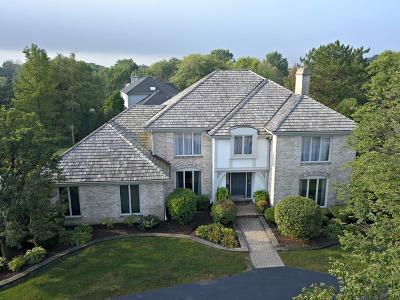 Burr Ridge Single Family Home New: 8720 Wedgewood Drive