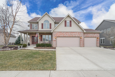 Lockport Single Family Home Contingent: 16821 Mohican Drive
