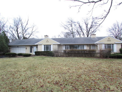 Arlington Heights Single Family Home New: 201 East Orchard Street