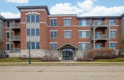 Bartlett IL Condo/Townhouse New: $228,900