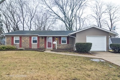 Palatine Single Family Home New: 354 North Wilke Road