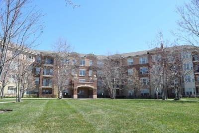 Glenview Condo/Townhouse For Sale: 2700 Summit Drive #209