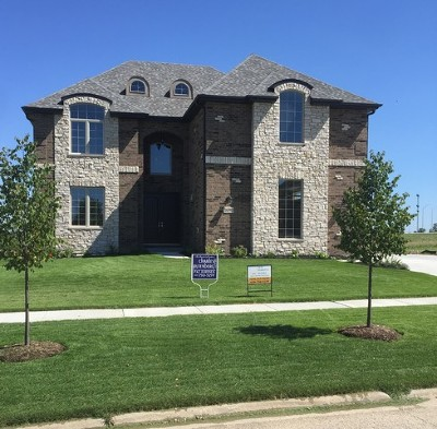 Lemont Single Family Home New: 16501 Willow Drive