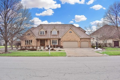 Naperville Single Family Home For Sale: 1470 White Eagle Drive