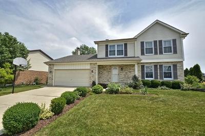 Lemont Single Family Home New: 1082 Covington Drive