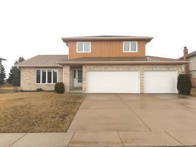 Minooka, Channahon Single Family Home For Sale: 704 Longwood Court