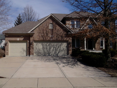 Plainfield Single Family Home New: 24656 Jolee Court