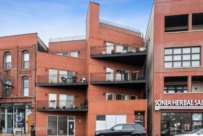 Chicago Condo/Townhouse New: 1621 West North Avenue #3E