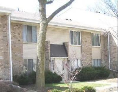 Hoffman Estates Condo/Townhouse For Sale: 1440 Vista Walk Lane #D