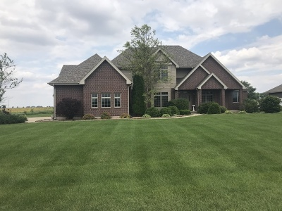 Minooka, Channahon Single Family Home For Sale: 2829 Ninovan Lane