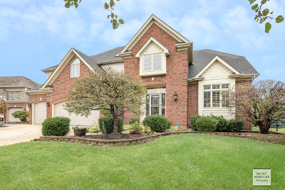 Naperville Single Family Home New: 3711 Mistflower Lane