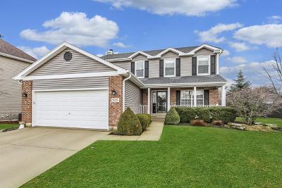 Roselle Single Family Home New: 525 Primrose Circle