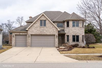 Roselle Single Family Home New: 790 Larson Lane