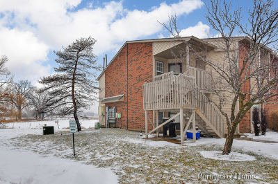 Du Page County Rental New: 1630 Country Lakes Drive #204