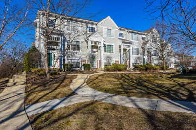 Condo/Townhouse New: 3453 Ravinia Circle #3453