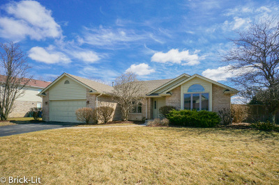 Mokena Single Family Home Re-Activated: 10513 Oconnell Avenue