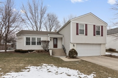 Buffalo Grove Single Family Home New: 821 Thompson Boulevard