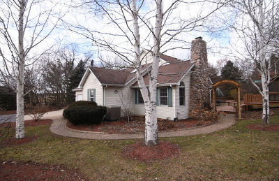 Elburn Single Family Home New: 1n871 Brundige Road
