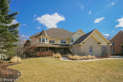 Mokena Single Family Home New: 11437 Swinford Lane
