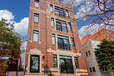 Chicago Condo/Townhouse New: 1827 North Larrabee Street #1