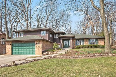 Homer Glen Single Family Home For Sale: 16200 South Pin Oak Court