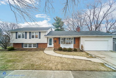 Naperville Single Family Home For Sale: 1204 Atlas Lane