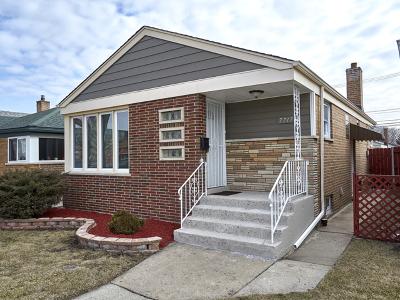 Chicago Single Family Home New: 7717 South Christiana Avenue