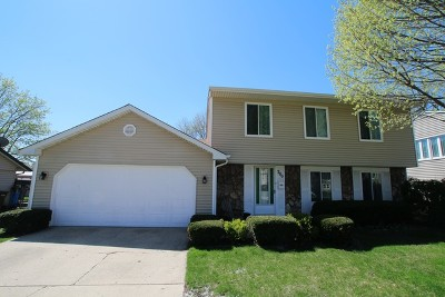 Roselle Single Family Home For Sale: 700 Autumn Drive