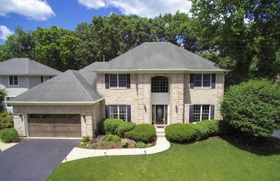 St. Charles Single Family Home New: 1003 Wildrose Springs Drive