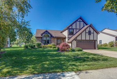Lake Zurich Single Family Home New: 360 Stone Avenue