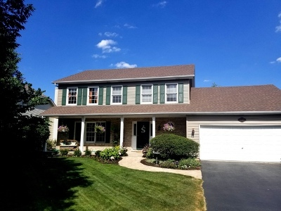 Naperville Single Family Home For Sale: 5084 Switch Grass Lane
