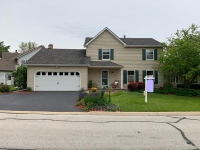 Lisle Single Family Home New: 6081 Angel Lane