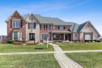 Glen Ellyn, Wheaton, Lombard, Winfield, Elmhurst, Naperville, Downers Grove, Lisle, St. Charles, Warrenville, Geneva, Hinsdale Single Family Home For Sale: 39w694 Switchgrass Lane