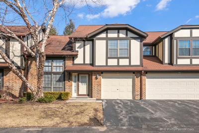 Du Page County Condo/Townhouse New: 225 Wildwood Court
