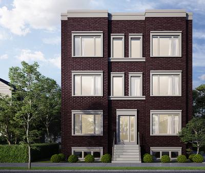 Chicago Condo/Townhouse New: 2742 North Hamlin Avenue #2S