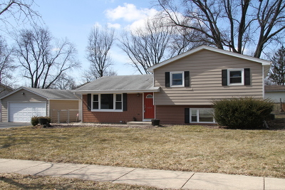 Downers Grove Single Family Home New: 6104 Puffer Road