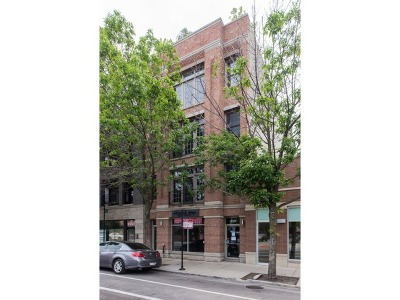 Chicago Condo/Townhouse New: 3530 North Halsted Street #2
