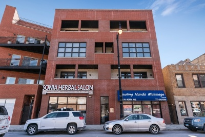 Cook County Condo/Townhouse New: 1625 West North Avenue #202