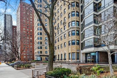 Condo/Townhouse New: 1418 North Lake Shore Drive #19