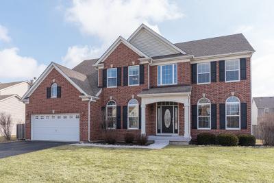 Gilberts Single Family Home For Sale: 223 Easton Drive