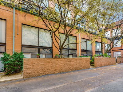 Condo/Townhouse New: 1760 West Wrightwood Avenue #114