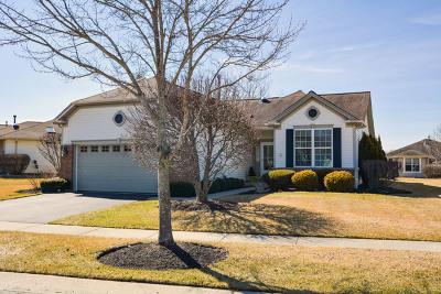 Huntley Single Family Home For Sale: 12419 Fox Run Court