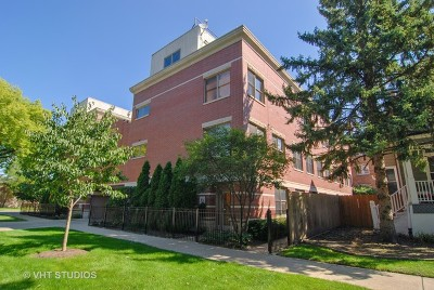 Cook County Condo/Townhouse New: 100 South Elmwood Avenue #6