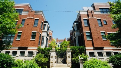 Chicago Condo/Townhouse New: 2340 West Wabansia Avenue #D1