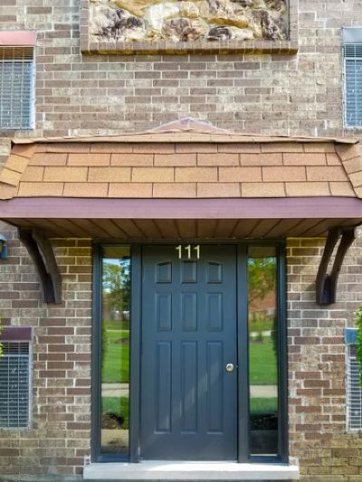 Palatine Condo/Townhouse New: 111 West Brandon Court #E13